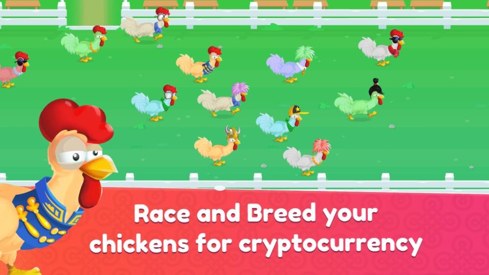 8. Chicken Derby.jpg
