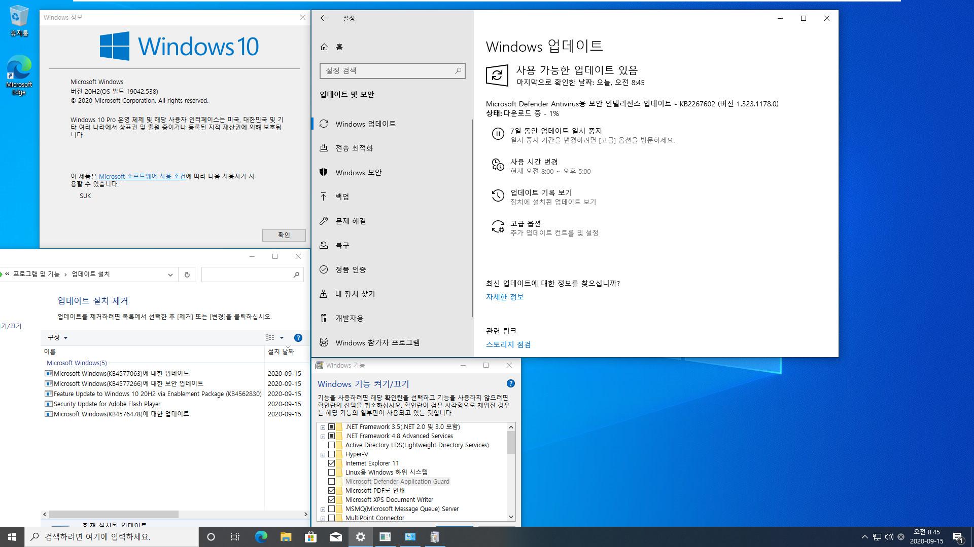 2020-09-15 업데이트 통합 PRO x64 2개 -Windows 10 버전 2004 + 버전 20H2 누적 업데이트 KB4577063 (OS 빌드 19041.538 + 19042.538) - 설치 테스트 2020-09-15_084509.jpg