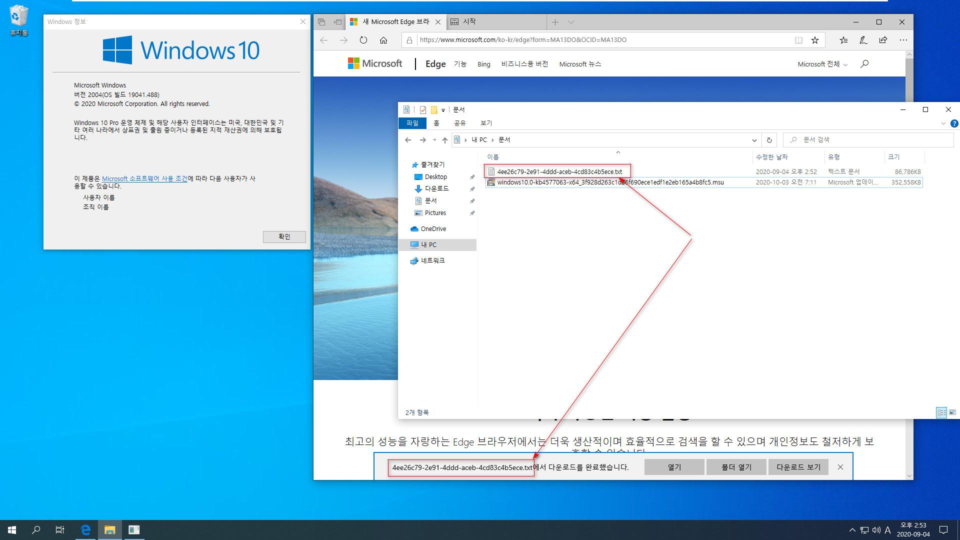 버전 2004 (20H1)에서 버전 2009 (20H2) 업그레이드하기 2020-10-06_083425.jpg