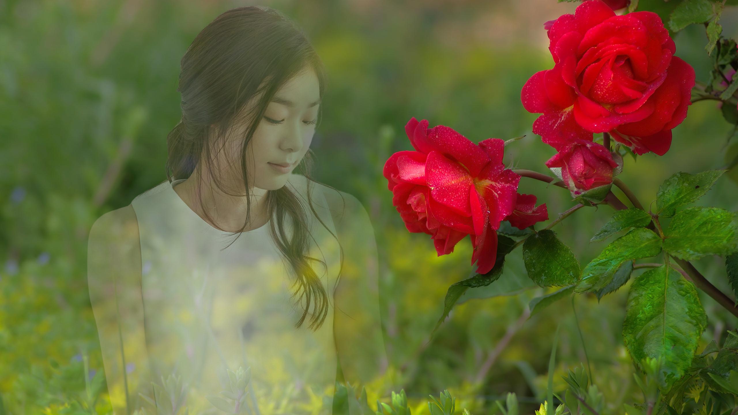 Rose_Yona_2560x1440.jpg