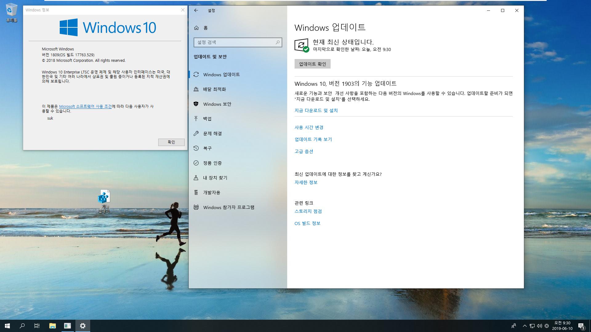 Windows 10 Enterprise LTSC [2019] - 버전 1809, 빌드 17763 - 버전 1903 기능 업데이트 테스트-MDL 사이트의 레지스트리 테스트 - 효과 없네요. 무시가 답입니다 2019-06-10_093028.png
