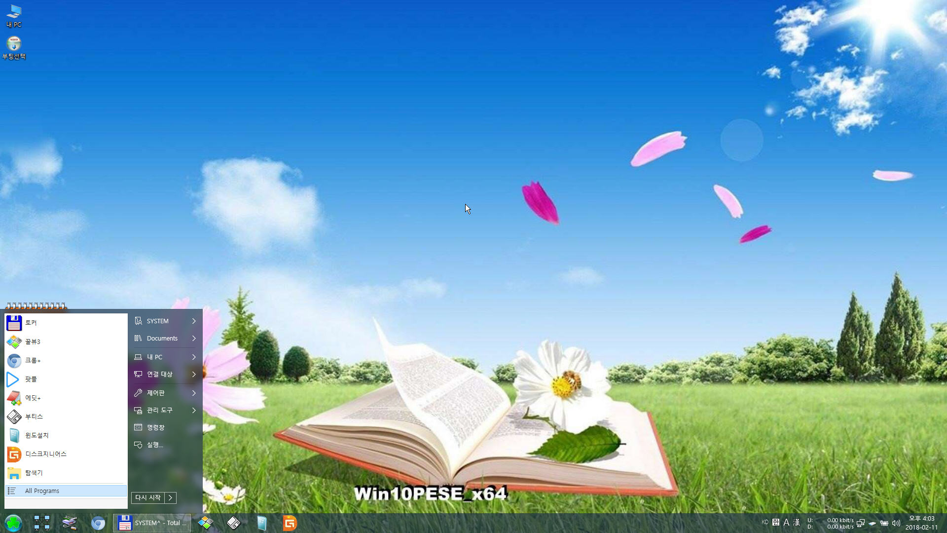 W10PE_4.jpg