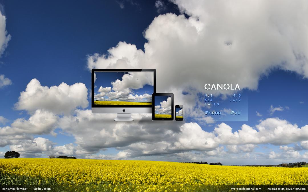 canola_wallpaper_by_mediadesign-d2zrel6.jpg