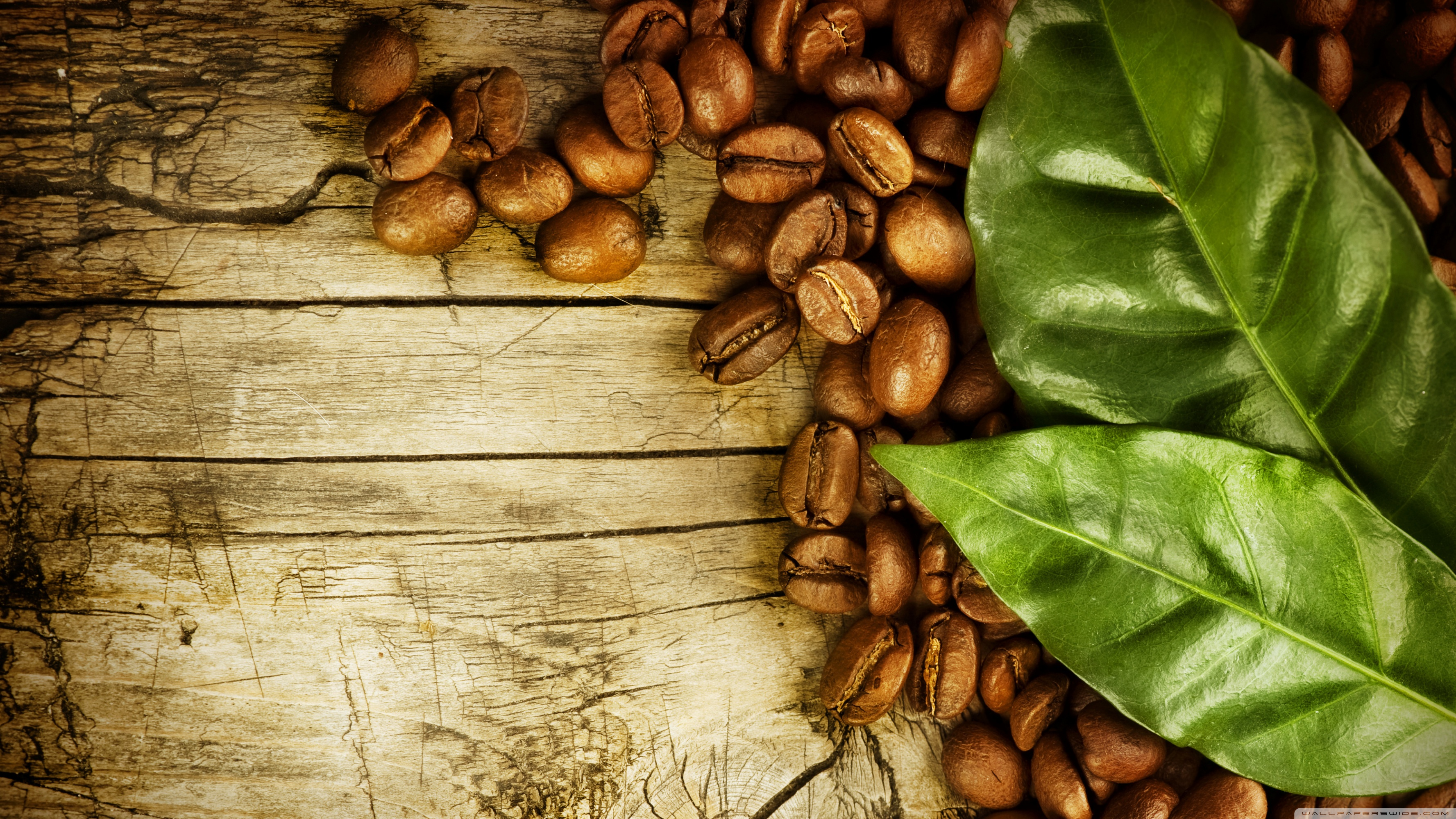 coffee_beans_and_leaves-wallpaper-3554x1999.jpg